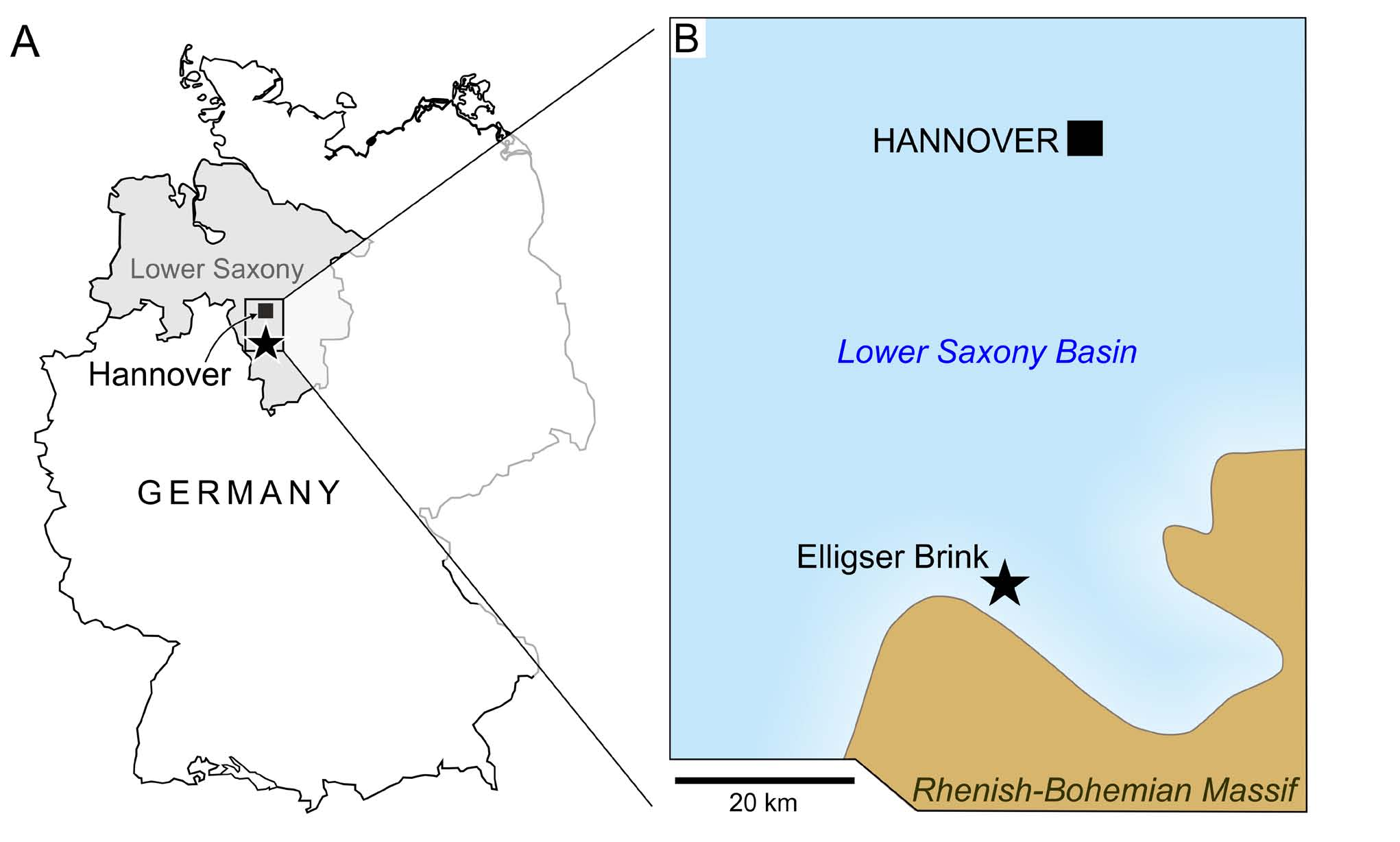 A) Location of the Elligser Brink locality in the Hils mountains (asterisk) of southern Lower Saxony (frame); B) Palaeogeography of southern Lower Saxony during the Hauterivian (after Mutterlose, 1984), indicating the near-shore position of the Elligser Brink.